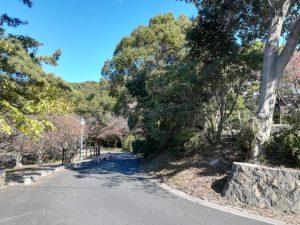 公園の通路